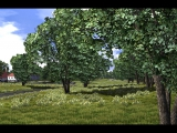 vegetation_wip